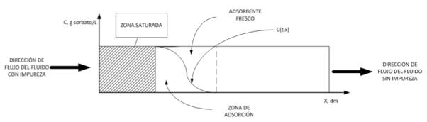 Figura 8. Zonas de la columna relativas al perfil de concentraciones a un tiempo dado